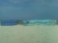 beach-iii